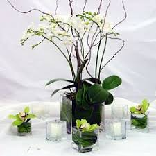 Potted Plants Wedding Centerpieces by Orchid Centerpiece Beach Wedding Pinterest Orchid