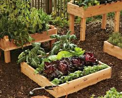 Raised Planter Beds by 167 Best Gardening Raised Beds Images On Pinterest Gardening
