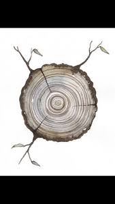 http thisiscolossal com wp content uploads 2011 08 tree 1 jpg