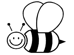 zebra coloring pages 611107 coloring pages for free 2015