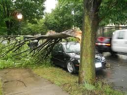 severe storm damage wnep com