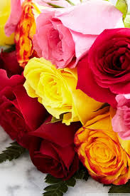 Colorful Roses Chocolate Dipped Strawberries And Colorful Roses Uhd Desktop