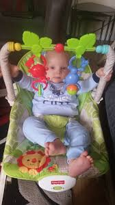 Tiny Love Bouncer Chair The Life U0026 Loves Of Lolly Fisher Price Newborn To Toddler Chair