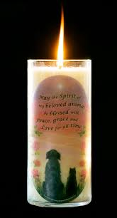memorial candle candles in memory of a pet pet loss memorial candle