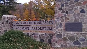 mn landscape arboretum transplanted chicagoan university of minnesota landscape