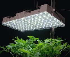 Grow Room Lights Grow Lights Artificial Lighting
