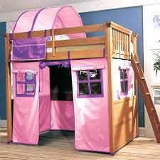 Bunk Bed Tents Diy Bed Tents O2drops Co
