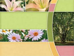 church powerpoint template spring trees sermoncentralcomspring