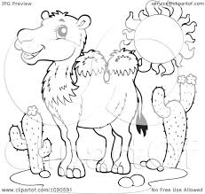 clipart coloring page outline of a wild desert camel royalty