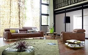 canapé et fauteuil cuir decoration canapé marron fauteuil cuir marron tapis vert ladaire