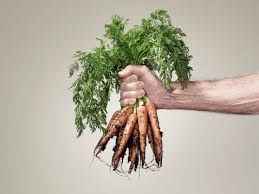 Root Vegetable Allergy - keep your allergies in check with these naturally anti histamine
