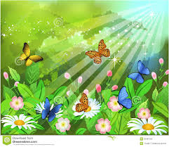butterflies on the flowers royalty free stock photo image 32487155