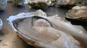 cuisiner les huitres huîtres chaudes au curry recette au four facile et rapide