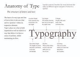 anatomy of letters images human anatomy learning