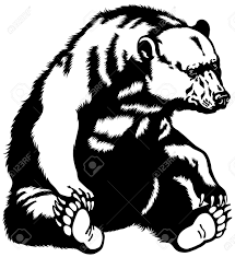 6 229 grizzly bear cliparts stock vector and royalty free grizzly