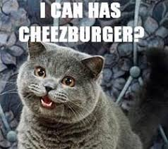 Cheezburger Meme Maker - cheezburger meme creator meme best of the funny meme
