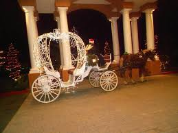 cinderella pumpkin carriage cinderella pumpkin carriage picture of temecula carriage