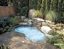 small pools and spas a little oasis was created in this compact urban yard as a mini
