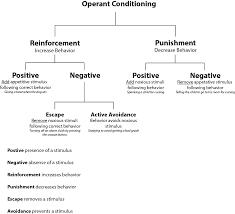 operant conditioning wikipedia