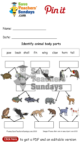 naming animal body parts 2 levels of difficulty go to http www