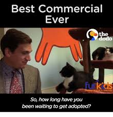25 best memes about best commercial ever best commercial ever