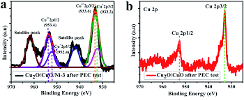 heterostructured cu 2 o cuo decorated with nickel as a highly