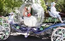 cinderella s coach transportation california weddings wishes collection disney s