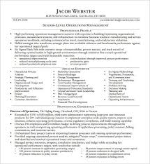 executive director resume executive director resume sles template smith format
