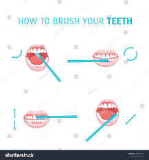 how brush your teeth brushing poster stock vector 500661241