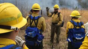 Wildfire Training by Delaware Forest Service Seeks Trainees For Wildfire Classes