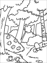 66 dessins de coloriage arbre à imprimer sur LaGuerchecom  Page 1