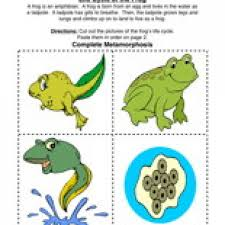 life cycle worksheets free worksheets library download and print