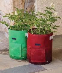 Patio Potato Planters Potato Planter Burpee