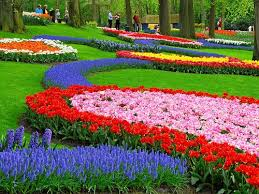 photo collection most beautiful flower gardens