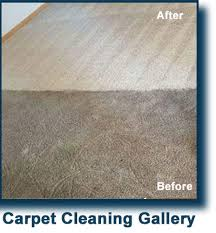 Dallas Carpet Repair Dalworth Carpet Cleaning Services In The Dallas Fort Worth Tx