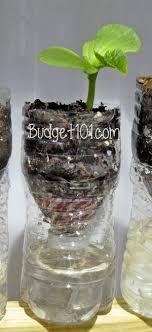 diy self watering herb garden growing herbs during winter made easy budget101 com