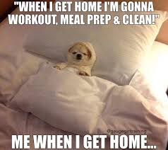 Funny Workout Memes - funny workout memes pinterest daily funny memes