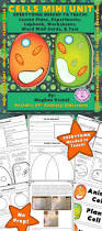 best 25 plant cell functions ideas only on pinterest function