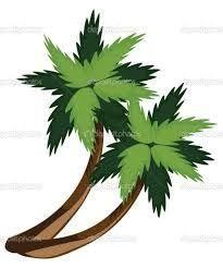 the 25 best palmier dessin ideas on pinterest impression de