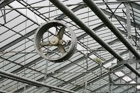 serre horticole en verre images gratuites architecture la technologie roue toit acier