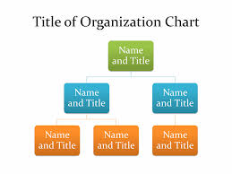 basic organization chart office templates