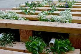 gardening ideas growing plants in pallets