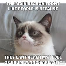 Kitty Meme Generator - grumpy cat explains the difference between cats and humans my