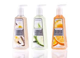 Kitchen Bath Collection by Bath U0026 Body Works Healthy Clean Kitchen Collection U2013 Spoiled Pretty
