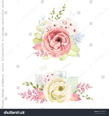 decorative ornaments flowers ranunculus leaves stock