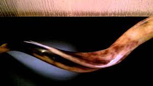 shofares de israel shofar 24 pulgadas shofares guatemala