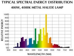 metal halide light color color of light