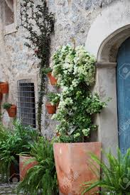 100 outside plants plants on window sill outside old house