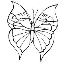 butterfly coloring sheets for kids free coloring pages