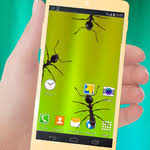 ants in phone apk ants in phone apk version 1 0